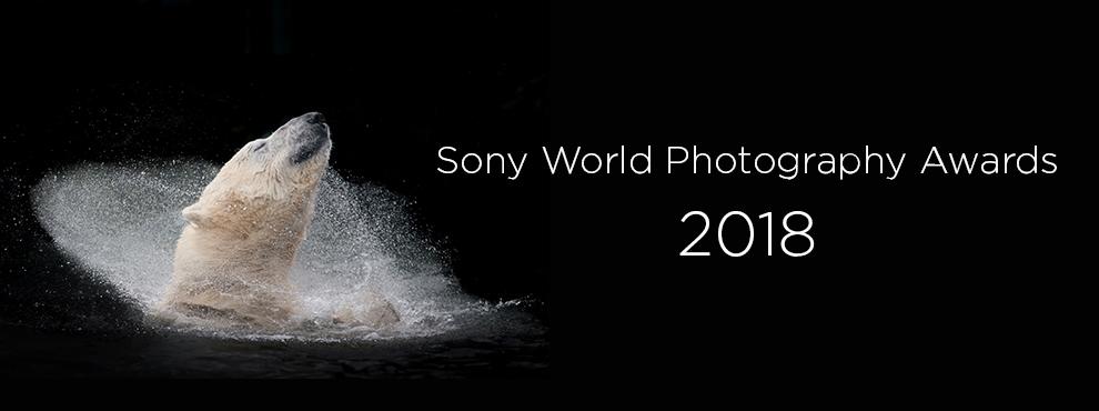 Sony World Photography Awards 2018 fotópályázat