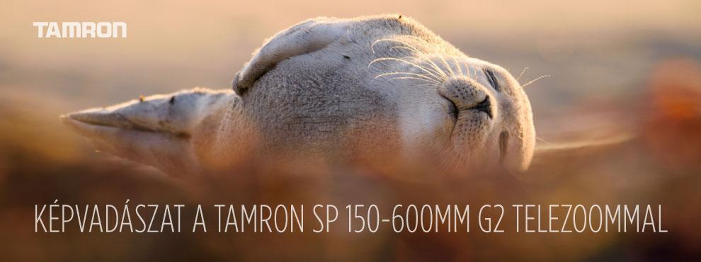 Képvadászat a Tamron SP 150-600mm G2 telezoommal