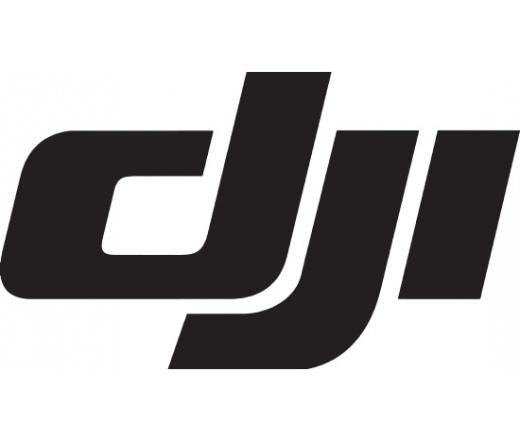 DJI P3 Part 99 Replica Model ( Pro)