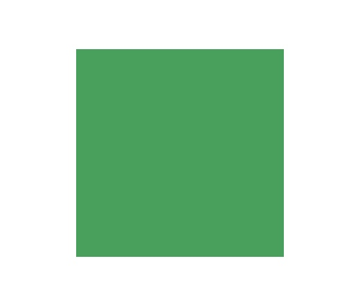Colorama 2.72x11m Chromagreen _33